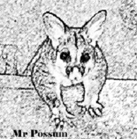 MR POSSUM
